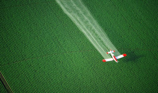 pesticidi campi