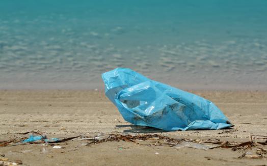 sacchetti plastica inquinamento