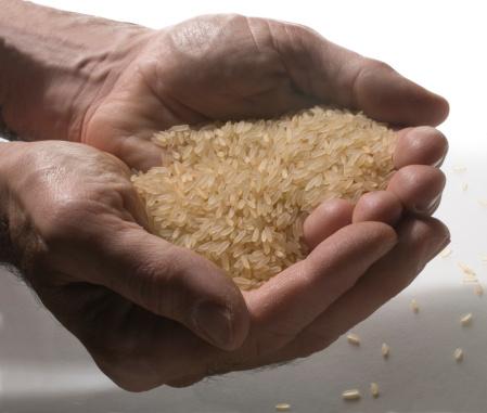 mani riso fame cibo mondo