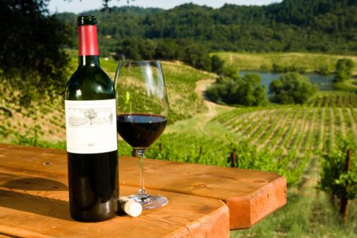 vigneti vino