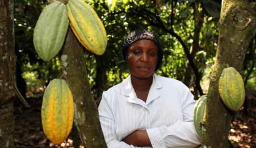 Oxfam donne e cacao Nigeria 1