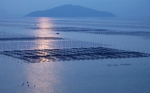 acquacoltura, allevamento pesci