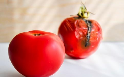 spreco, cibo,pomodoro, 182067813
