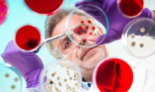 Cina il coronavirus avanza: le domande e le risposte degli esperti. Le probabilità di arrivo in Italia. Nessun problema per i ristoranti cinesi