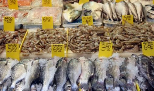 pescheria pesce