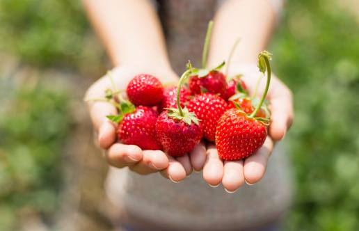 fragole frutta