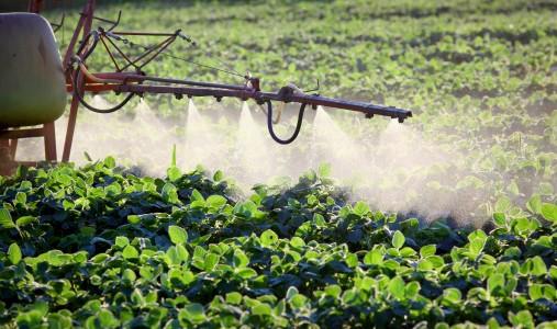 pesticidi erbicidi campi agricoltura soia
