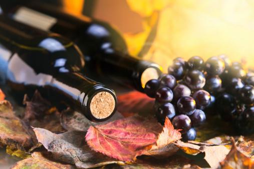 vino solfiti