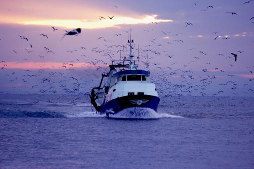 Pesca, è iniziato l'assalto all'Artico. Ma l'accordo per tutelarlo è ancora bloccato. L'articolo di Valori