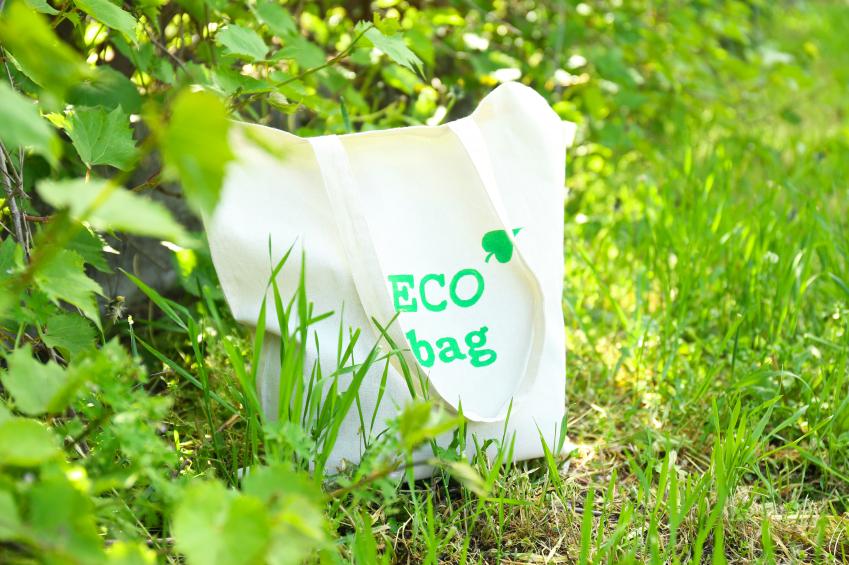 I sacchetti in bioplastica potrebbero influire sulla germinazione (se non smaltiti correttamente): criticità sulla metodologia dello studio scientifico