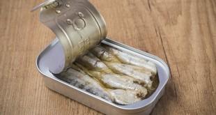 sardine in scatola