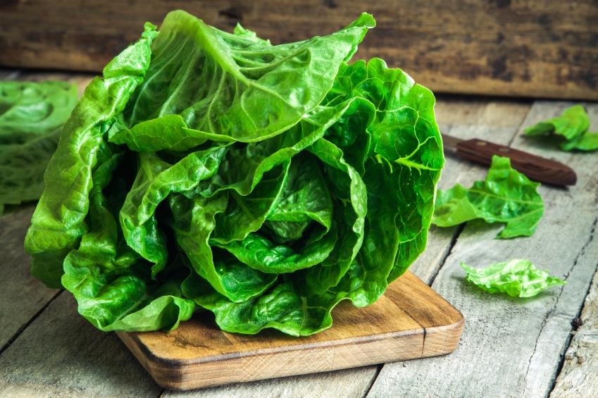 insalata verde romana tagliere