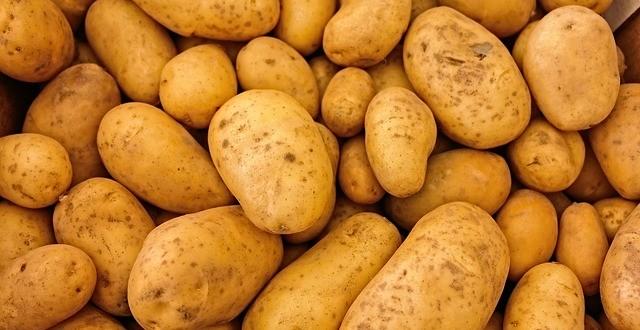 acrilammide patate