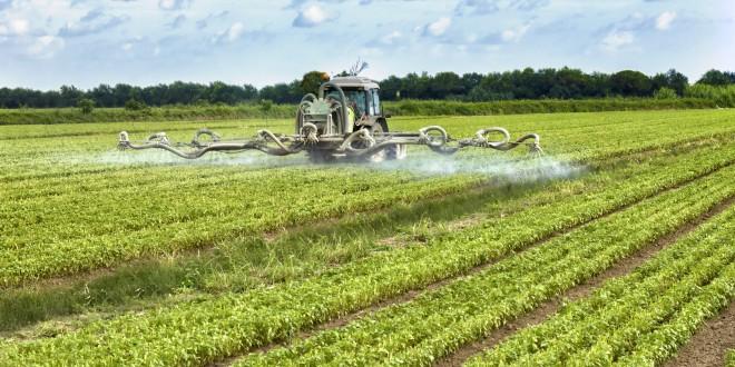pesticidi erbicidi campi agricoltura 2 glifosato