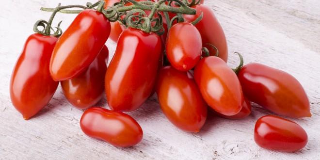 Sicurezza alimentare, testato sui pomodori un nuovo metodo per ridurre il rischio di infezioni alimentari da frutta e verdura