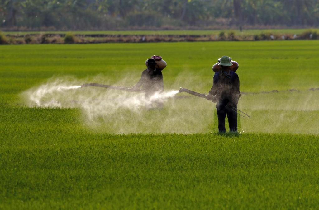 pesticidi erbicidi campi agricoltura 1