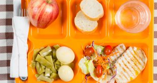 vassoio mensa scolastica School lunch tray