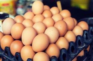 fresh eggs on tray at asian street market