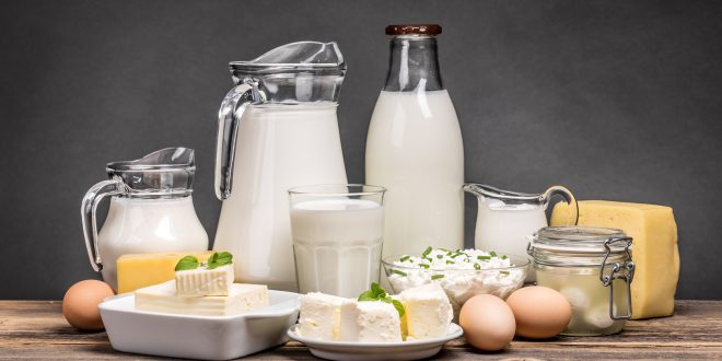 formaggi latte yogurt latticini uova