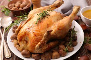 pollo salmonellosi danimarca