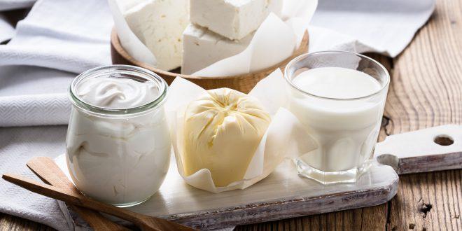formaggi latte yogurt latticini