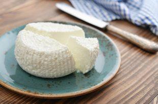 ricotta latticini formaggio piatto