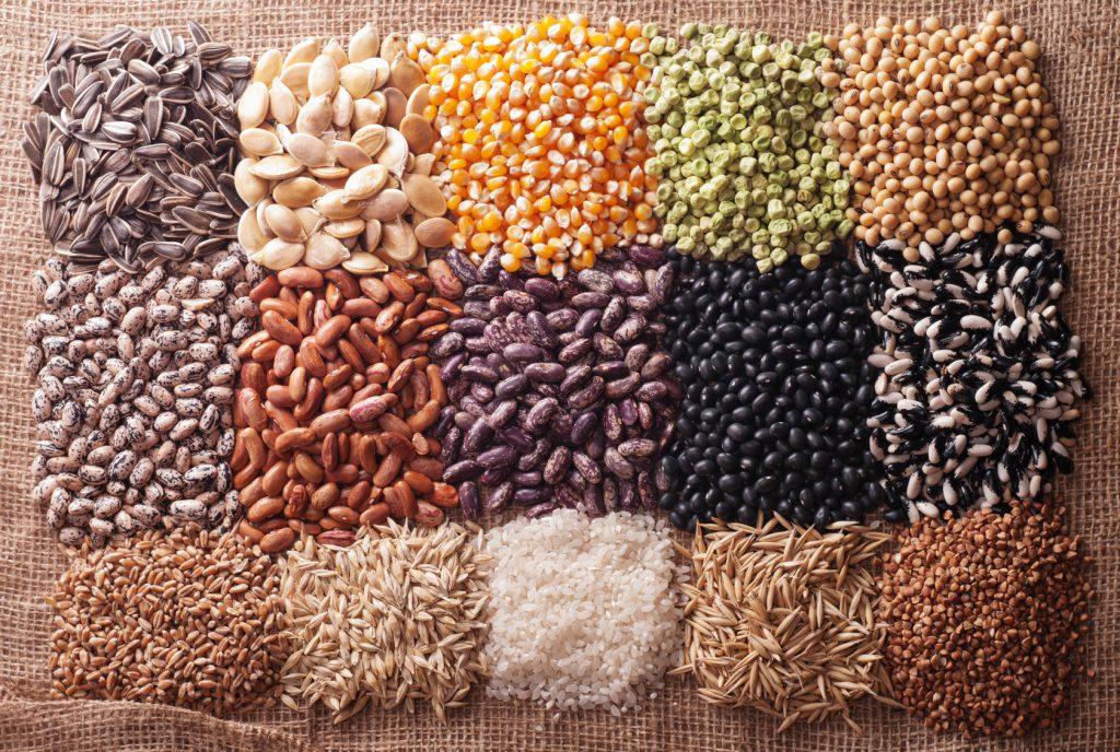 semi cereali legumi fao