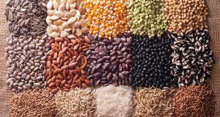 semi cereali legumi
