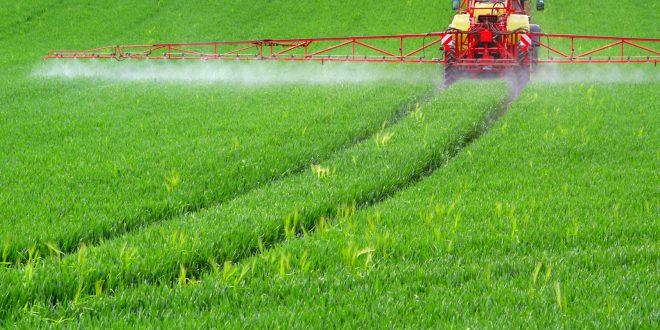 Greenpeace per una nuova politica agricola in Europa che non favorisca solo i modelli intensivi