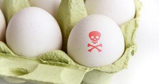 uova contaminate pericolo allerta