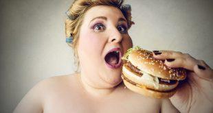 junk food hamburger sovrappeso obesita