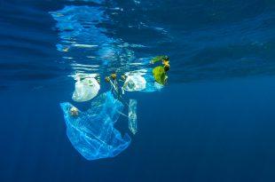 rifiuti plastica oceano inquinamento