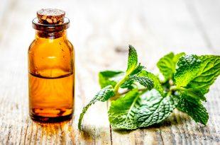 aroma olio essenziale menta