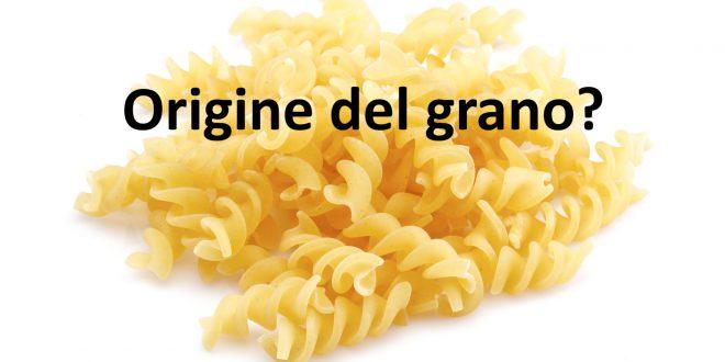 Pasta 100% italiana? L'elenco delle marche più famose e l'origine del grano