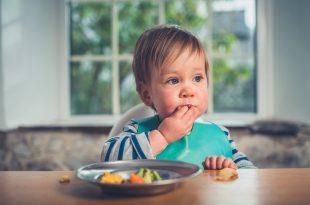 autosvezzamento bambino cibo solido