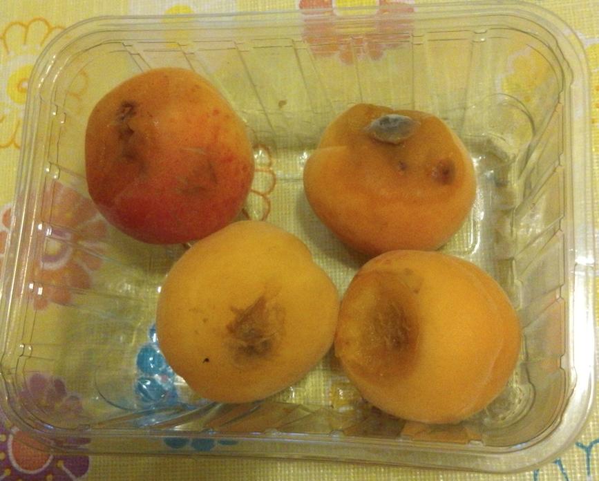 albicocche marce frutta nelle scuole