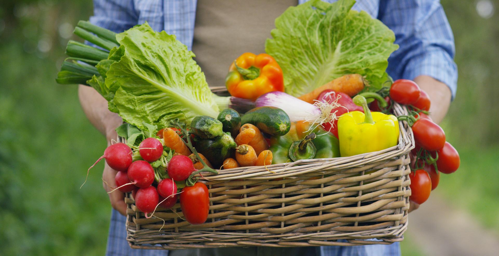 frutta verdura bio vegatali