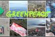 Greenpeace contro la plastica delle grandi aziende: Coca-Cola, San Benedetto, Ferrero, Nestlé, Haribo e Unilever