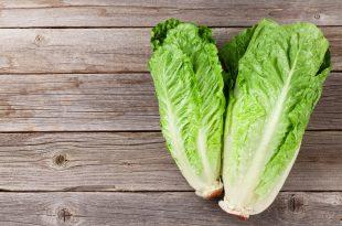 Fresh Romano salad