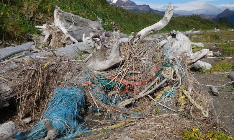 plastica Katmai National Park in Alaska US National Park Service