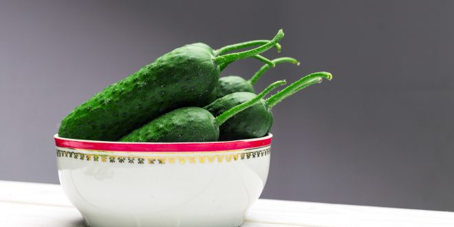 Cucumber on wooden background