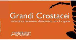 grandi crostacei libro eurofishmarket dettaglio