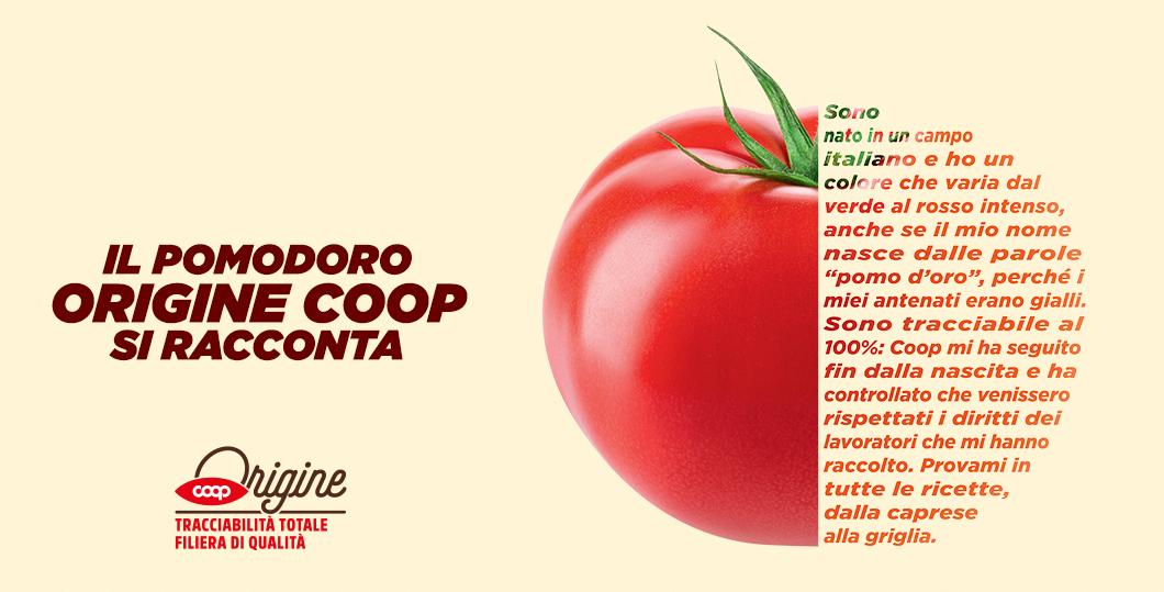 pomodoro coop origine