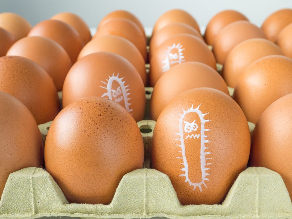 Salmonella bacterium drawn on eggs