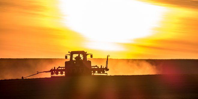 """Idrocarburi nei fanghi di depurazione, aumentano di 20 volte i limiti per lo spargimento nei campi agricoli. La norma """"nascosta"""" nel Decreto Genova"""