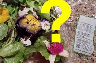 misticanza e fiori insalata 2