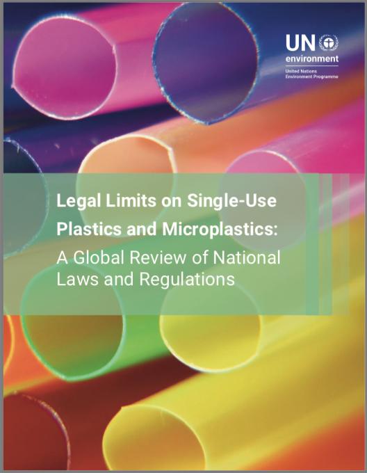 UNEP rapporto 2018 plastica