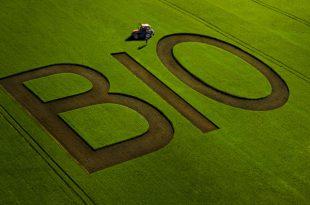 agricoltura bio biologico campi coltivare