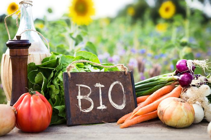 agricoltura biologica bio verdura