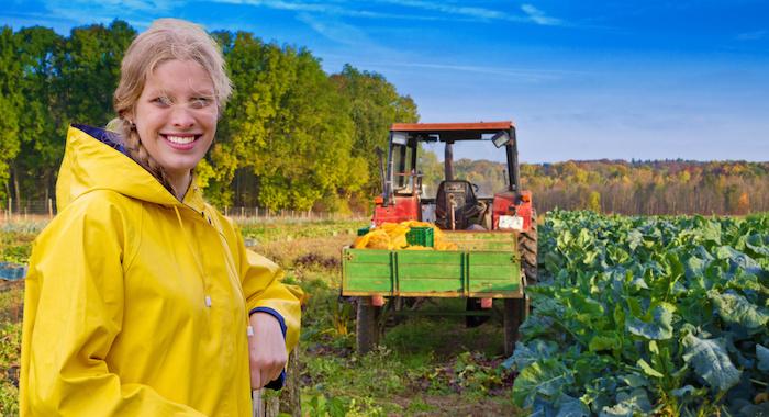 agricoltura biologica bio campi coltivare